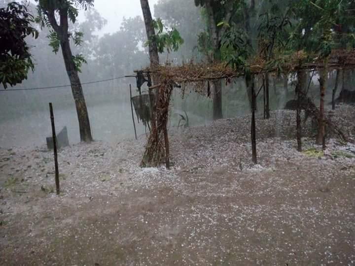 ঝড়-শিলাবৃষ্টি-Hulahaghat storm severe hailstorm damage