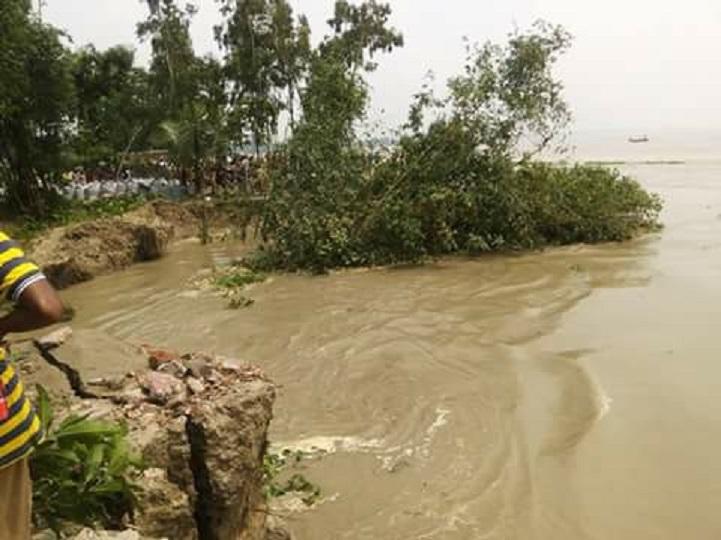 গাইবান্ধায় নদীগর্ভে অর্ধশতাধিক ঘর-বাড়ী কান্না যেন থামছেই না