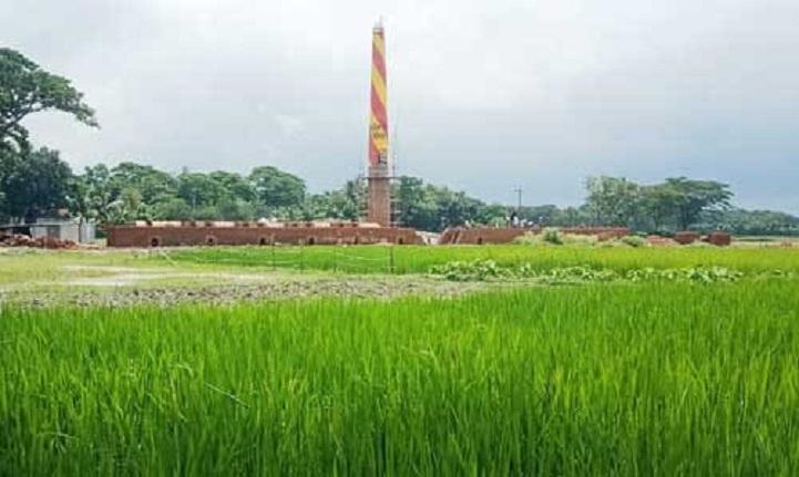 ত্রিশালে ফসলি জমিতে চলছে ইটের ভাটা নির্মানের কাজ
