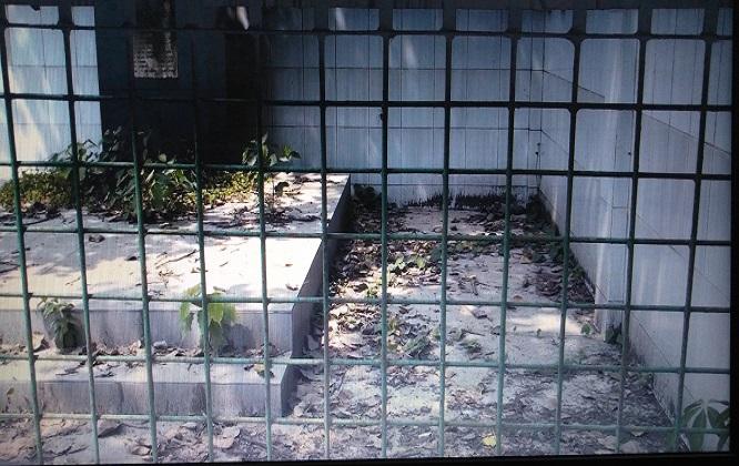 বেনাপোল কাগজপকুর স্মৃতি সৌধের স্থানটি এখন ময়লা আবর্জনার স্থুপ