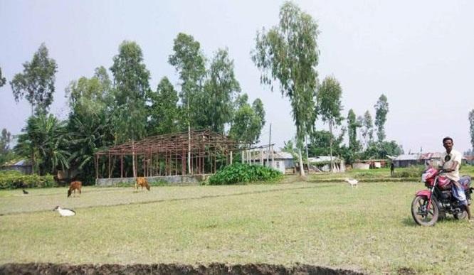সরকারি প্রাথমিক বিদ্যালয়ের টিন খুলে নিয়ে গেছে দুর্বৃত্তরা