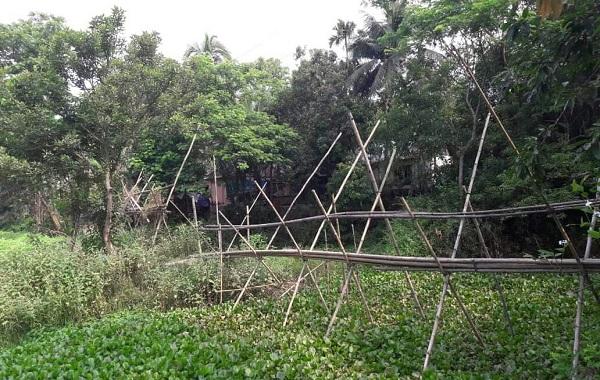 চাঁদপুরে ৮ শতাধিক মানুষের একমাত্র ভরসা ঝুঁকিপূর্ণ সাঁকো