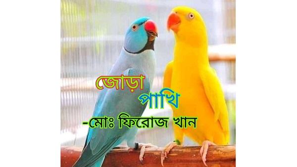 জোড়া পাখি-মোঃ ফিরোজ খান