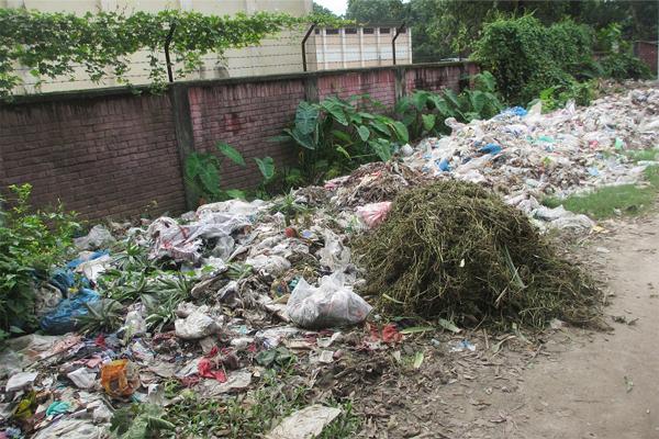 আটোয়ারীতে জনবহুল স্থানযেন ডেঙ্গু মশা তৈরীর কারখানা