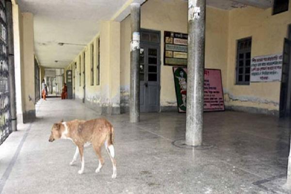 রামচন্দ্রপুর পল্লী স্বাস্থ্য কেন্দ্র চিকিৎসা সেবা হতে বঞ্চিত