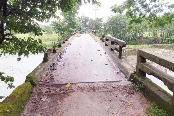 মরণ ফাঁদে পরিণত হয়েছে ঈশ্বরগঞ্জের আমলিতলা ব্রীজ